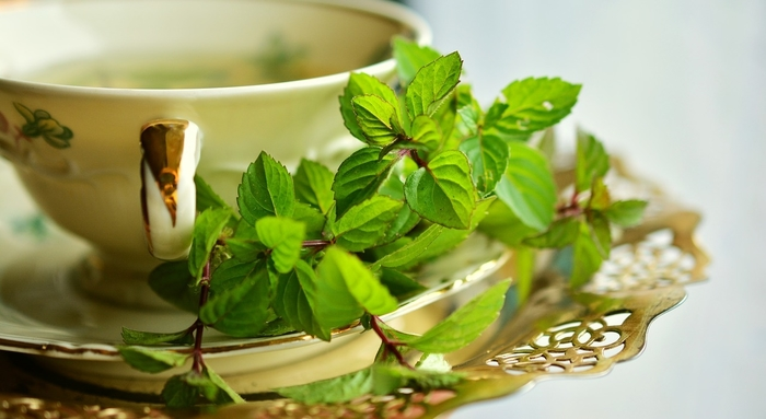 mint leaves with peppermint tea